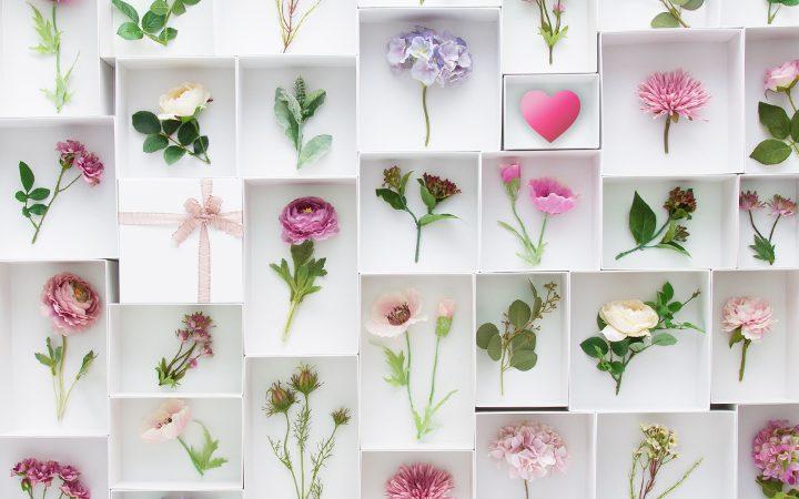 メリアルームを表す花
