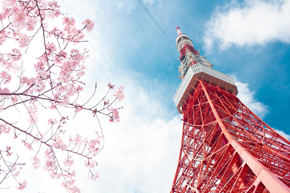 の春の東京タワーでサプライズプロポーズ