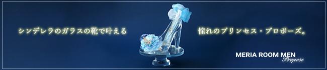 シンデレラのガラスの靴プロポーズ