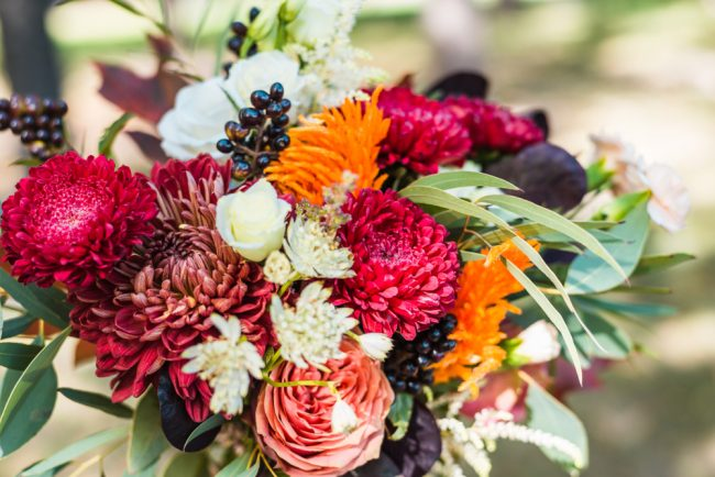 秋が旬の花