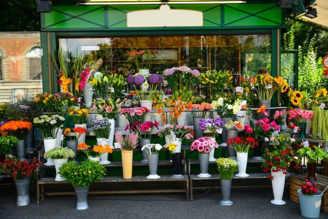 お花屋さんで売っている生花